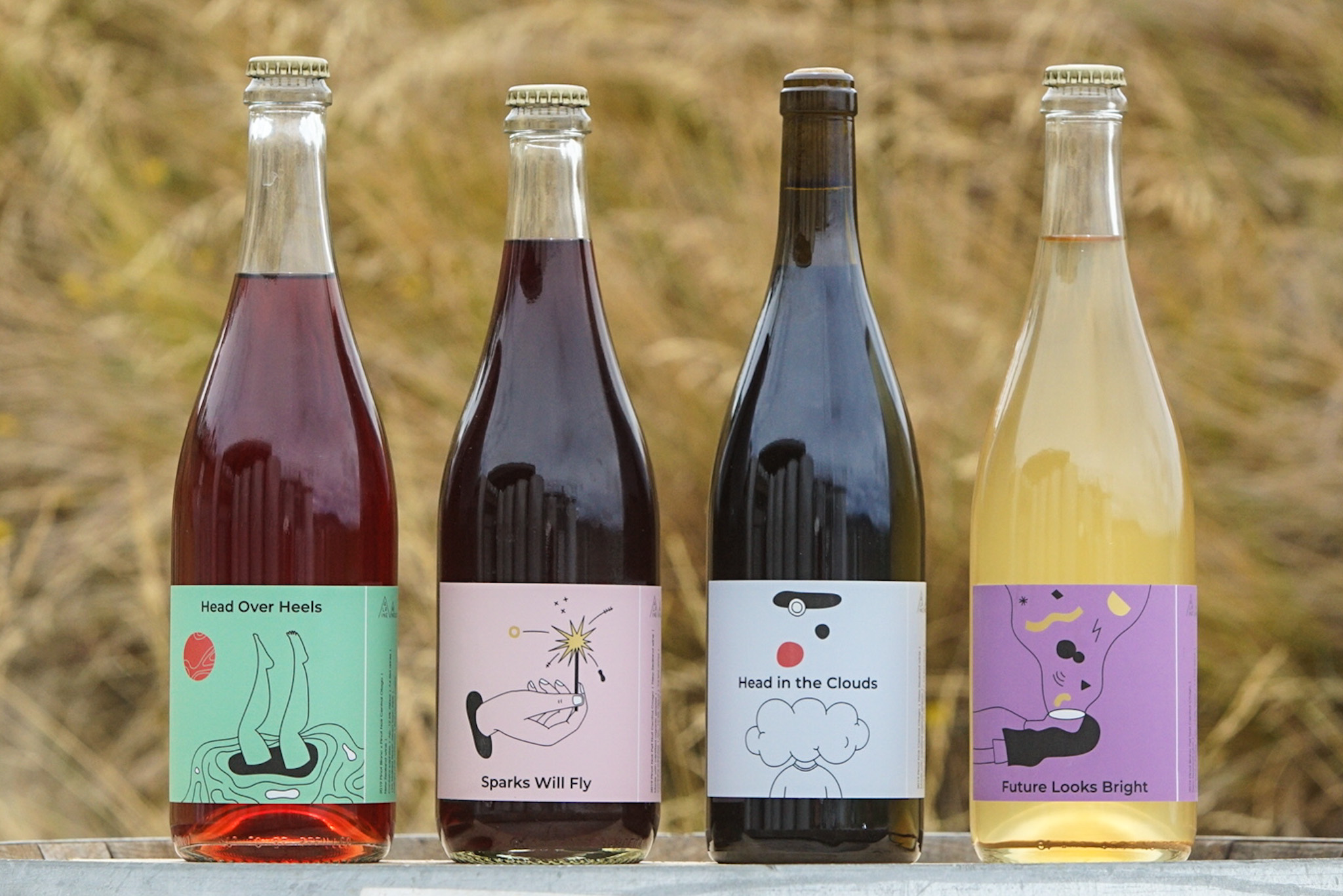 An image of all four 2019 Alpine Wine Co wines
